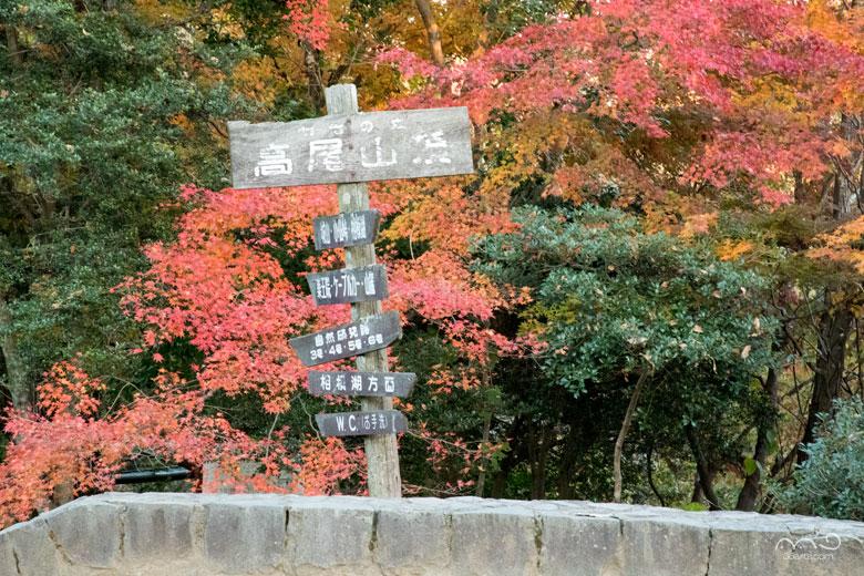 高尾山頂と紅葉